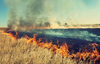 Exceptional Events Analysis of Smoke Impacts on Ozone Levels in Kansas