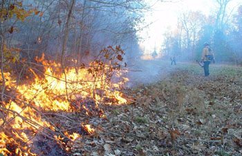 Kansas Prescribed Burn Smoke Modeling System Helps Predict Air Quality Impacts
