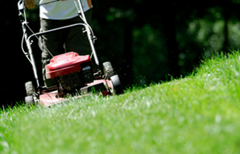 Improving Emissions Estimates for Lawn and Garden Equipment